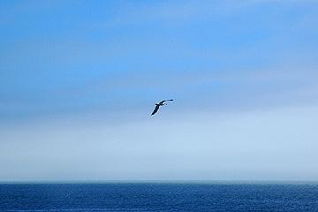 sea_02.jpg